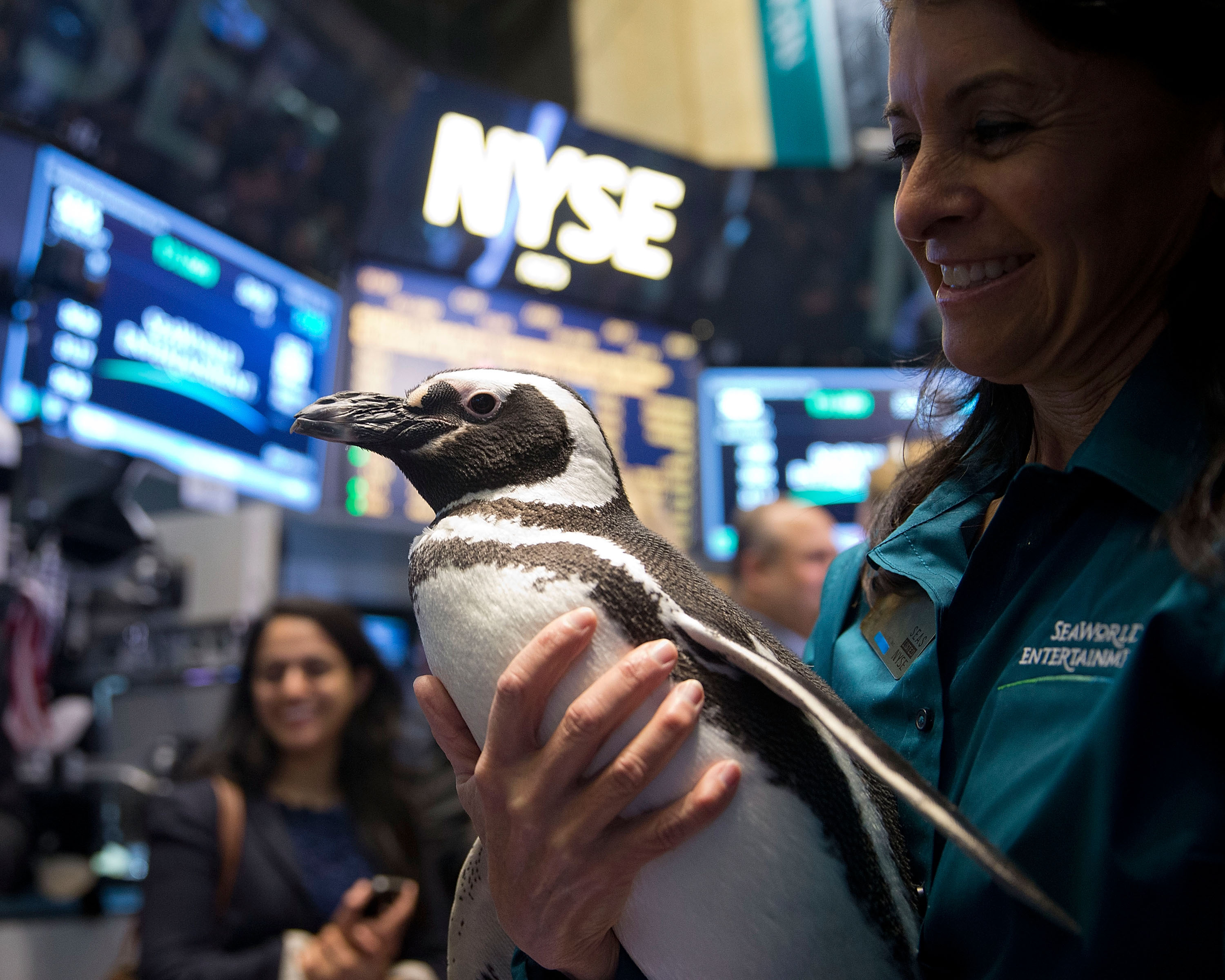 """SeaWorld's """"Penny the Penguin"""" visits the NYSE trading floor on SeaWorld Entertainment Inc.'s IPO day. (Photo: Business Wire)"""