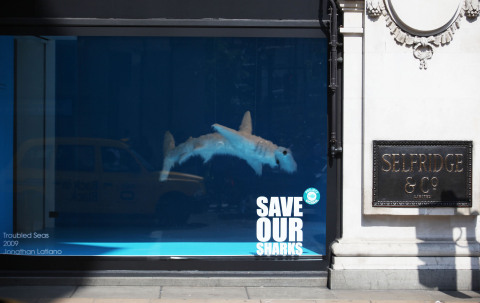 Selfridges Project Ocean 'Save Our Shark's campaign window (Photo: Business Wire)