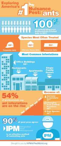 Exploring America's number 1 nuisance pest: ants. (Graphic: Business Wire)