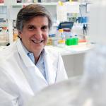 Pat Levitt, PhD, director, Developmental Neurogenetics, The Saban Research Institute (Photo: Business Wire)
