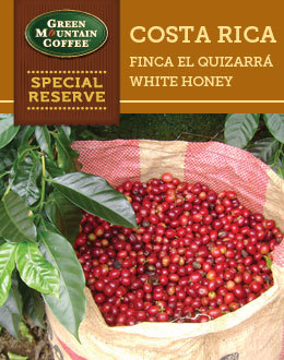 Grown on the farm at Finca El Quizarrá in the rich soils between the Poas and Barva volcanoes of Cos ...
