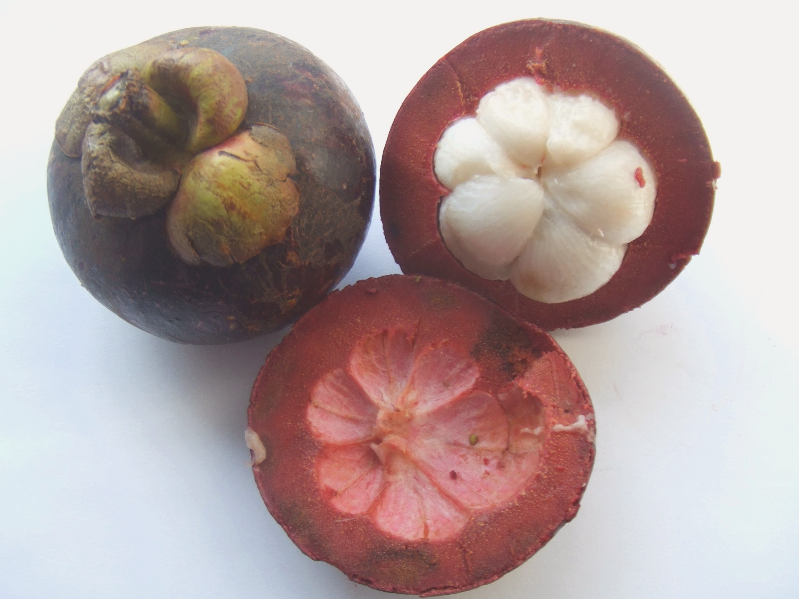 Pure Garcinia Cambogia Plus and Slim Cleanse | eXiire