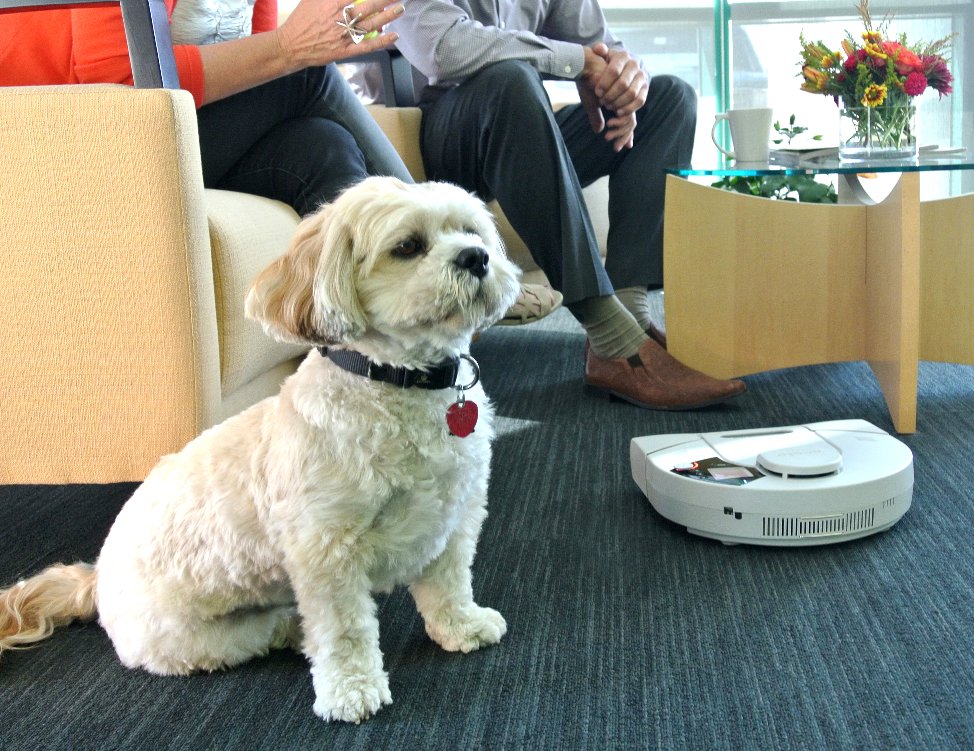 The Neato robot vacuum picks up pet hair better than any other robot vacuum tested, according to CNET. (Photo: Business Wire)