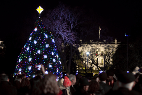 Here, a National Tree of the past sparkles as part of the illumination ceremony. This year's national tree will shine brightly with energy-saving LEDs. Photography by Paul Morigi.