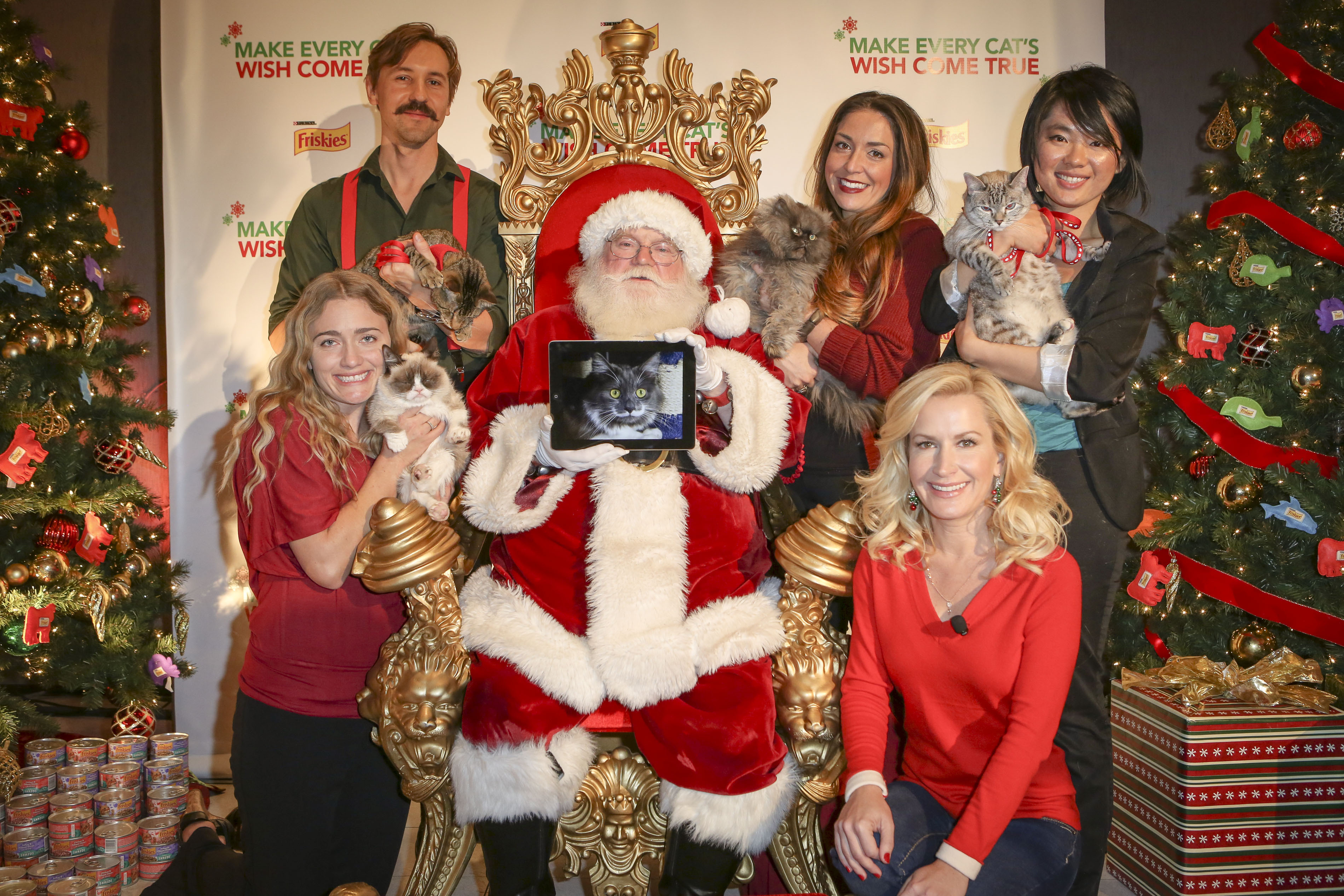 "Actress and cat lover Angela Kinsey introduced Internet cat sensations Grumpy Cat, Colonel Meow, Nala Cat, Hamilton the Hipster Cat and Oskar the Blind Cat at an event by Friskies to debut their holiday music video ""Hard to Be a Cat at Christmas"" in support of wet cat food for all cats this holiday season, Tuesday, Dec. 10, 2013, at Capitol Records in Los Angeles. The video can be viewed at www.friskies.com/holiday (Bret Hartman/AP Images for Friskies)"