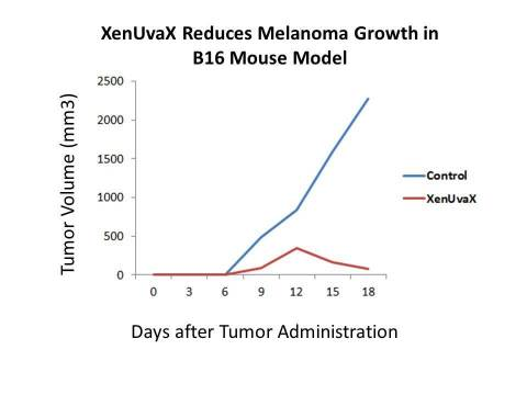 XenUvaX administration into mice bearing melanoma resulted in reduction of tumor growth, as compared to animals which received saline control. (Graphic: Business Wire)