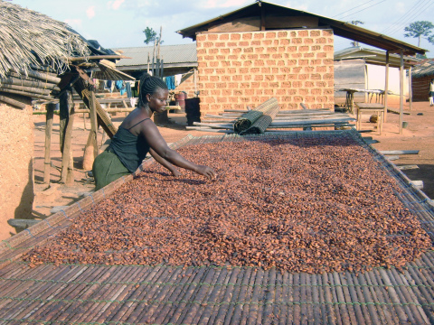 The Hershey Company's cocoa sustainability projects include leadership and economic training for wom ...