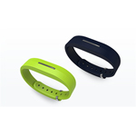 Toshiba-Developed Wristband Activity Monitor (Photo: Business Wire)