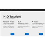 H2O Web User Interface (Graphic: Business Wire)