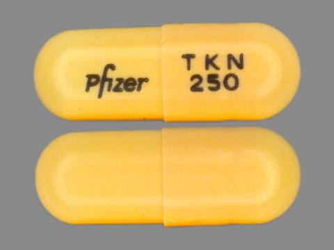 Tikosyn 0.25mg: Encapsulated into #4 (closed length: 0.563 in +/- 0.012 in), peach/peach opaque, locking type, hard gelatin capsule shells. (Photo: Business Wire)