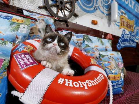 "Grumpy Cat, Friskies' ""Official Spokescat,"" earns her rank as ""Worst Mate"" aboard the S.S. Holy Shrimp Boat in Austin on Friday, March 7, 2014 to introduce Friskies Seafood Sensations with NEW shrimp flavor and deliver a bounty of the new food to local Austin shelter cats. (Erich Schlegel/AP Images for Friskies)"