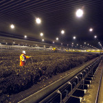 SENA Waste Services employees working at the Edmonton Waste Recycling Facility's aeration hall. (Photo: Business Wire)