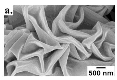 Close-up image taken with a scanning electron microscope (SEM) showing the shrink wrap's surface with a fixed amount of gold (10 nm) and 5 nm thicknesses of nickel in the metal coating. Credit: Optical Materials Express.
