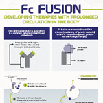 Infographic on medicines developed using Fc fusion