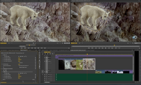 Masking and Tracking in Premiere Pro provides accurate masks that follow subjects and blur out faces and logos. (Photo: Business Wire)