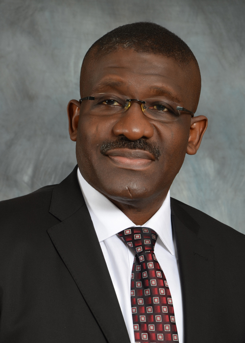 Waheed A Olagunju, Acting Managing Director/CEO, Bank of Industry (BOI)(Photo: Business Wire)