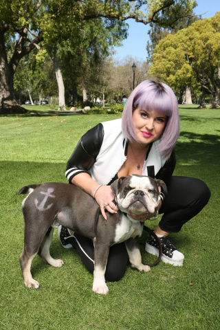 Willy the English Bulldog, in Los Angeles with Kelly Osbourne, shares a flair for purple and anchors with PetSmart's Pet Expressions, a new grooming offering at PetSmart in-store salons, providing dogs a non-toxic, temporary way to show personality. (Photo: Business Wire)