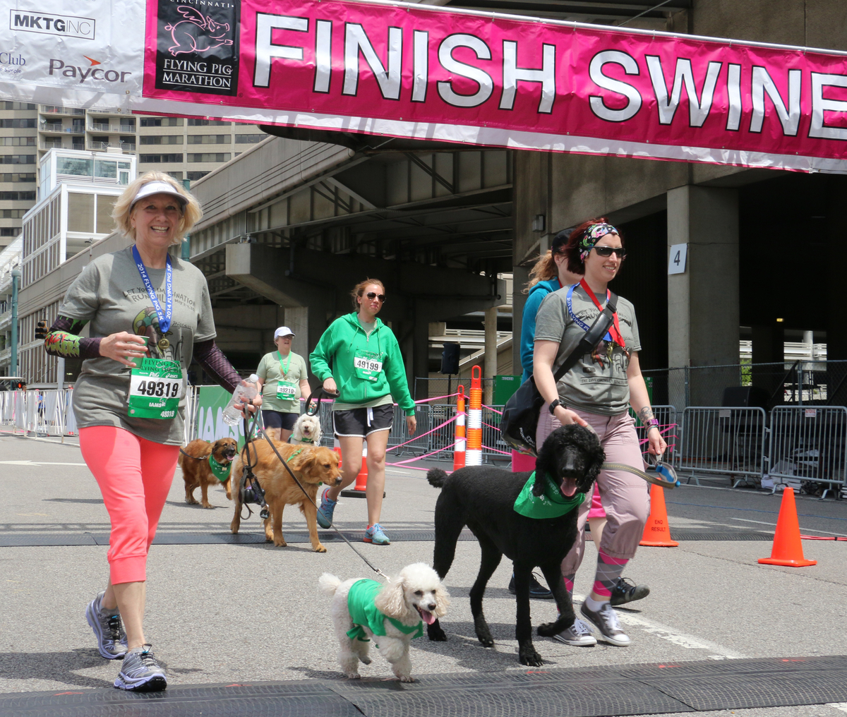 Runners and their dogs cross the finish line during the IAMS Flying Fur dog run in downtown Cincinnati, Sat., May 3, 2014. More than 500 dogs and owners ran in the two-mile race as part of races taking place during the Flying Pig Marathon weekend events. IAMS Bowls of Love will be donating a bag of pet food for each dog running in the event to the SPCA in Cincinnati. (Tom Uhlman/AP Images for IAMS)