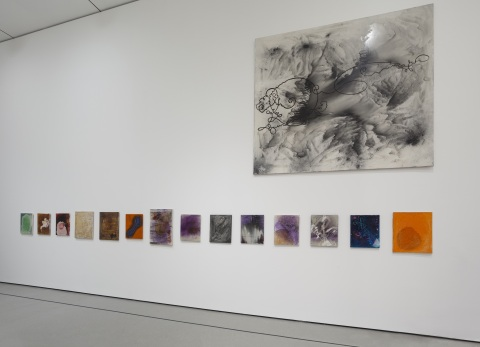 Installation view of Alibis: Sigmar Polke 1963-2010, The Museum of Modern Art, April 19-August 3, 2014. (c) 2014 The Museum of Modern Art. Photo: Jonathan Muzikar. All works by Sigmar Polke (c) 2014 The Estate of Sigmar Polke/Artists Rights Society (ARS), New York/VG Bild-Kunst, Bonn, Germany