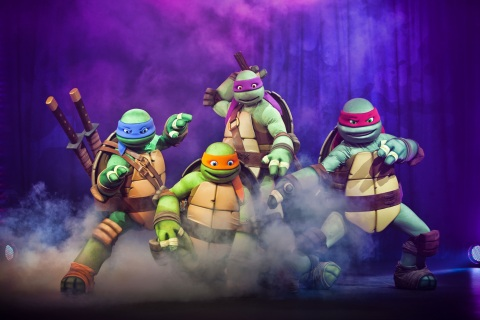 Teenage Mutant Ninja Turtle are taking over the Nickelodeon Suites Resort - Summer of 2014 (Photo: Business Wire)