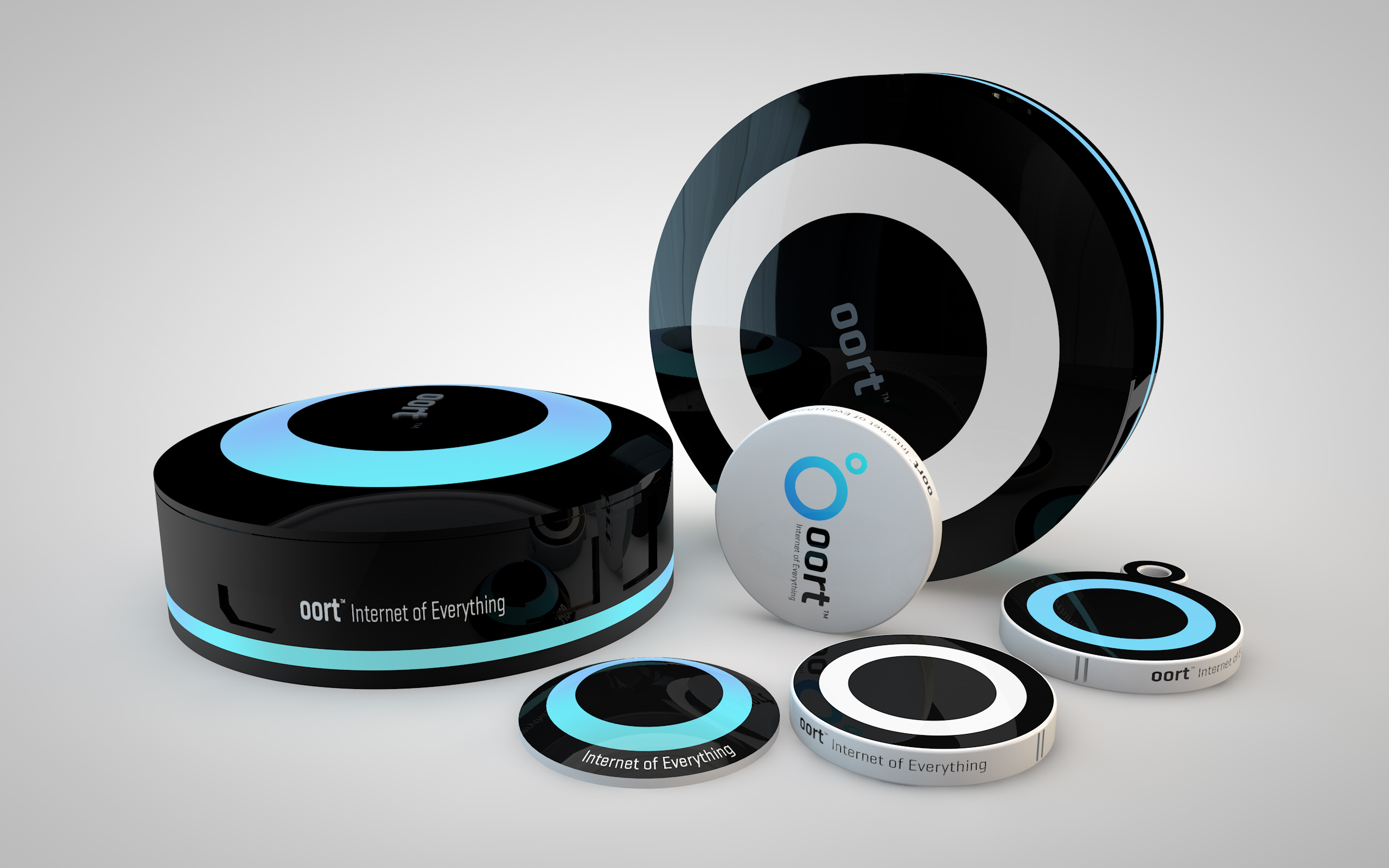oort Internet of Things Hub and Devices (Photo: Business Wire)