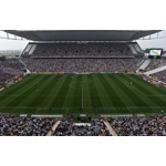 Arena de Sao Paolo, one of the stadiums at which World Cup 2014 is being played, features a turf management system from Subair Systems. (Photo: Business Wire)