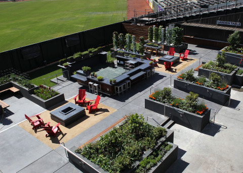 The Garden at AT&T Park will offer fresh fruits and vegetables for Bon Appetit Management Company's ballpark menus as well as a community space for culinary education. Credit: Suzanna Mitchell/SF Giants