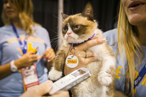 """Friskies® """"official spokescat,"""" Grumpy Cat helped announce the third annual """"The Friskies"""" awards for the best Internet cat videos of the year during VidCon at the Anaheim Convention Center, Friday, June 27, 2014, in Anaheim, Calif. Fans can enter """"The Friskies"""" at www.TheFriskies.com. (Bret Hartman/AP Images for Friskies)"""