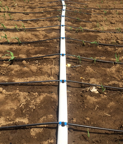 Utilizing an advanced, collapsible design, PolyNet is an innovative mainline and sub-mainline piping solution from Netafim that enables growers to easily install, recoil and relocate a drip irrigation system for use in an alternate field or different configuration. (Photo: Business Wire)