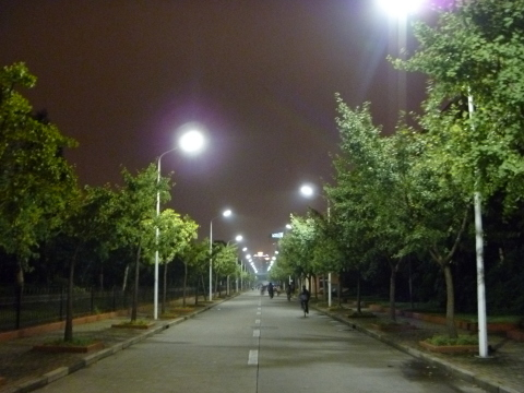 To investigate the effect of LED streetlights on the discomfort glare perceived by drivers, researchers from China and the Netherlands devised a laboratory set-up to mimic visual conditions on the road. The volunteers were asked to rate their level of discomfort with the glare on a standard deBoer 9-point rating scale, ranging from unnoticeable to unbearable. This photo shows a road with LED streetlamp glare where the researchers validated their laboratory findings. Credit: Yandan Lin.