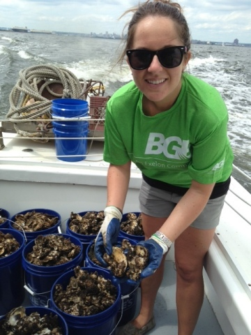 BGE volunteer Stephanie Leach prepares to plant the oysters from the Inner Harbor oyster gardens that she tended to for nine months in a reef in near Fort Carroll in the Patapsco River. The oysters planted in the reef will filter more than 1 million gallons of water per day, improving the health and water quality of the Harbor. (Photo: Business Wire)