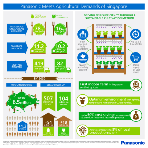 Infographic of Panasonic Vegetable Farm in Singapore (Graphic: Business Wire)