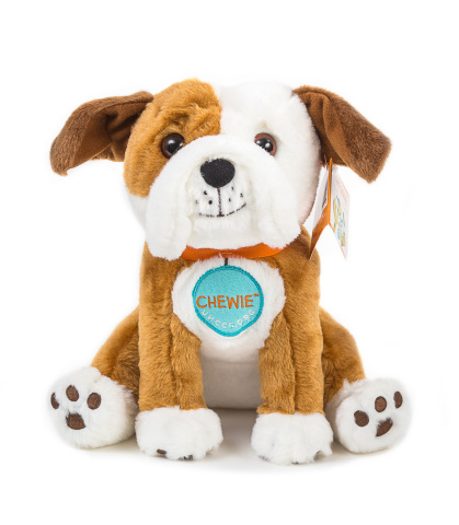 """""""Oliver & Hope's Adventure Under the Stars"""" is available on Amazon.com for $13.95. The first 250 people who purchase an """"Oliver & Hope's Adventure Under the Stars"""" book will receive a Chewie the English bulldog plush toy, to be shipped separately (Photo: UnitedHealthcare Children's Foundation)."""