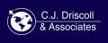 C.J. Driscoll & Associates Lanza Nuevo Informe a Fondo sobre el Mercado Telemático Comercial Chino