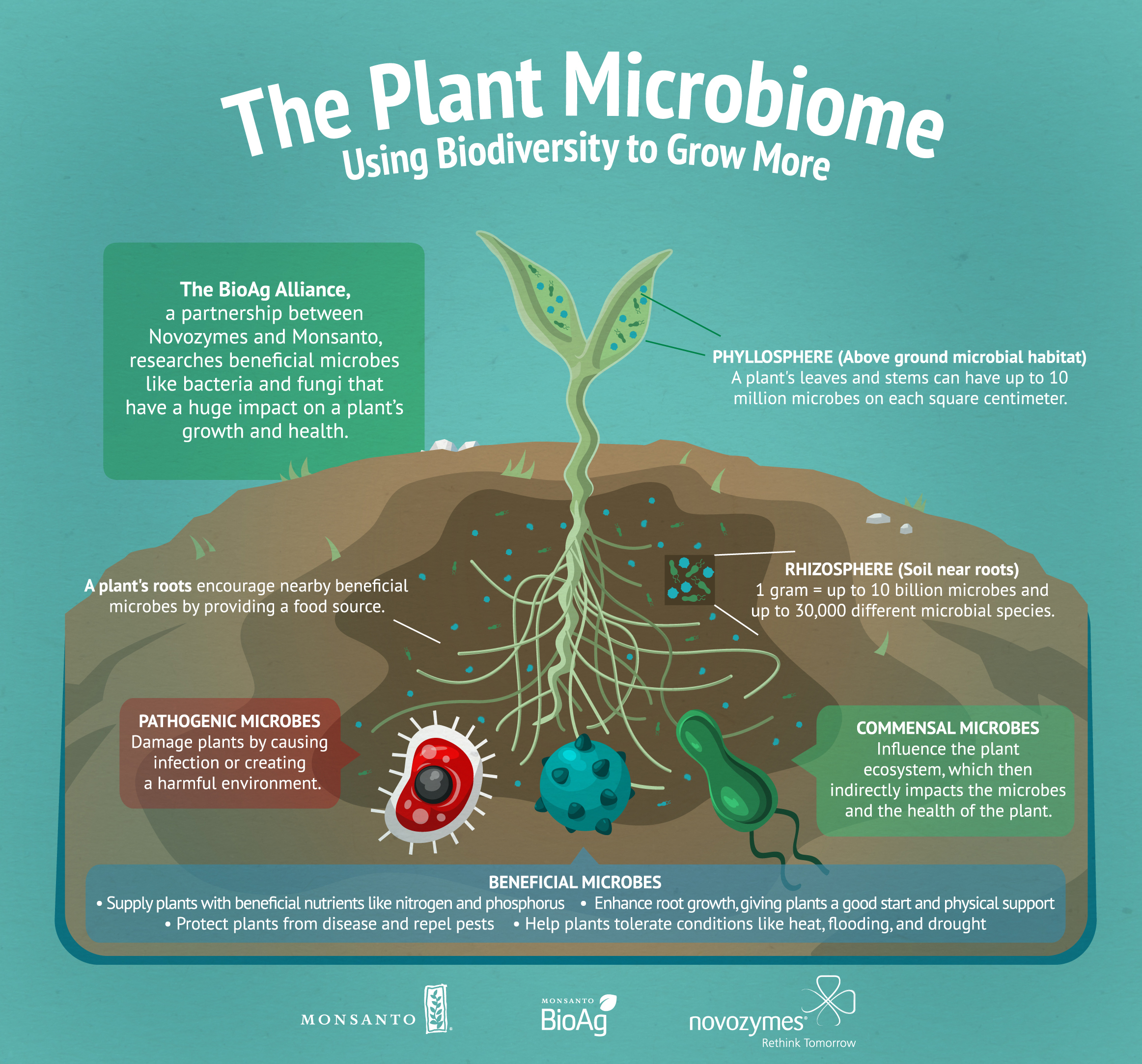 Microbiome Infographic (Graphic: Business Wire)