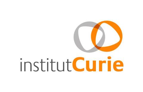 (Graphic: Institut Curie)