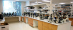 BioSurplus will be holding an auction of lab equipment from Lexicon Pharmaceuticals in The Woodlands, TX. The online auction will run from October 2–9, 2014. (Photo: Business Wire)