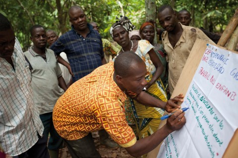 Ivory Coast cocoa farmers learning modern agricultural farming practices through Hershey's Learn to