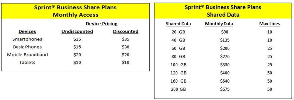 Wireless business plans