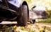 Delticom: Zum Herbstanfang Reifen checken
