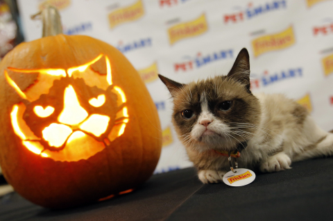 Friskies® official spokescat, Grumpy Cat, comes face-to-face with the first-ever Grump-O-Lantern to kick off a Halloween promotion with PetSmart. Famed sculptor Ray Villafane carved the pumpkin for the meet-up at a PetSmart store in Surprise, AZ on Thursday, October 2. Fans can download the exclusive Friskies stencil at www.PetSmart.com/Friskies and share their own Grump-O-Lantern photos using #Grumpkin. (Rick Scuteri/AP Images for Friskies/PetSmart Halloween Promotion)