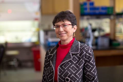 Grace Aldrovandi, MD, chief of the Division of Infectious Diseases at Children's Hospital Los Angeles. (Photo: Business Wire)