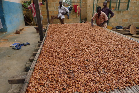 The Hershey Learn to Grow program aims to reach more than 8,700 cocoa farmers who belong to 27 cooperatives spread across six regions of Cote d'Ivoire, the world's largest cocoa-producing country. (Photo: Business Wire)
