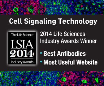 "Cell Signaling Technology Wins ""Best Antibodies"" and ""Most Useful Website"" at The Life Science Industry Awards (Graphic: Business Wire)"