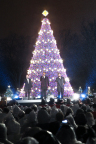 The National Christmas Tree will be lit by GE ENERGY STAR®-qualified LED holiday lights. Replicas of the National Christmas Tree will be on display at GE Lighting's headquarters in Ohio and at GE's Corporate Headquarters in Connecticut. Pictured here is last year's National Christmas Tree on display in President's Park in Washington D.C. Photo credit: Paul Morigi, 2013 National Christmas Tree Lighting