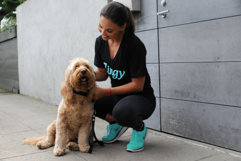 Zingy launches on-demand dog walking service in Los Angeles. (Photo: Business Wire)