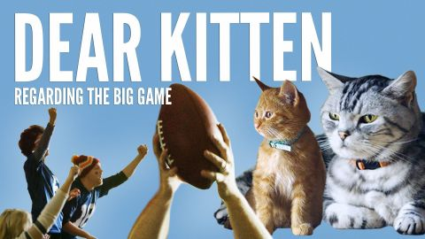 Friskies(R) to Air Kitten-Sized Ad During the Big Game (Photo: Business Wire)