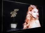 Planar Transparent OLED Display (Photo: Business Wire)