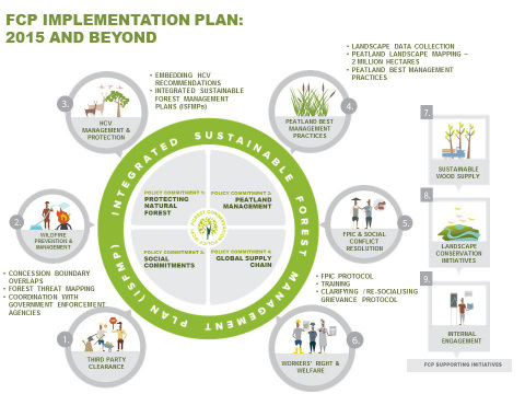Forest Conservation Policy Implementation Infographic - Asia Pulp and Paper - APP (Graphic: Business Wire)