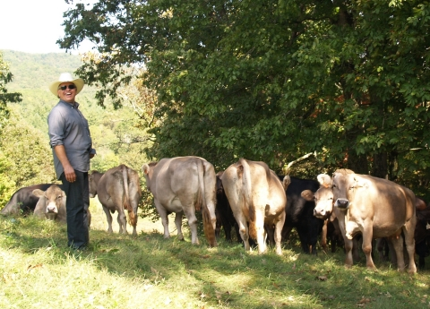 North Carolina rancher Steve Whitmire pasture raises his Brasstown Beef cows to standards that meet the Global Animal Partnership's Step-4 animal welfare standards. Brasstown Beef is now available via online retailer Elephant Grocers. (Photo: Business Wire)